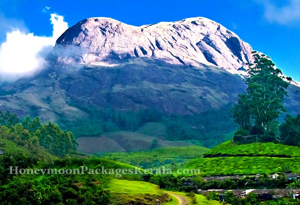 kerala hill stations honeymoon